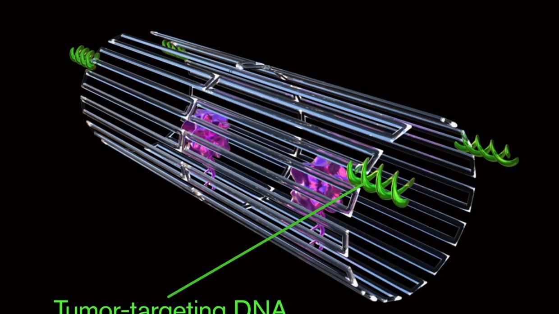 Nanorrobots programados para matar el cáncer