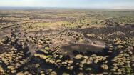 Los efectos del incendio de Doñana, en fotografías aéreas