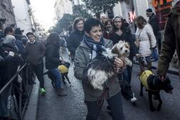 San Antón: la fiesta más animal