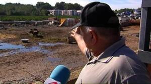 El propietario de un desguace de Montserrat deja un toro suelto para evitar robos