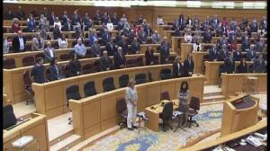 Minuto de silencio en el Senado por todas las mujeres víctimas de violencia de género