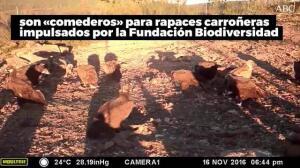 Muladares sociales de la Fundación Biodiversidad