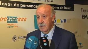 """Del Bosque: """"Las perspectivas son estupendas para la final y para el futuro de la selección"""""""