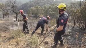 Los bomberos franceses comienzan a controlar las llamas