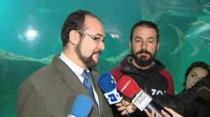 Los reyes magos del vidrio llegan al zoo de Madrid