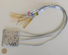 Electrodos intracraneales del tipo utilizado para registrar la actividad cerebral en el estudio